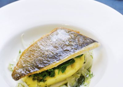 Sea bream fillet